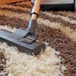 Tips Agar Karpet Bulu Awet Dan Tahan Lama