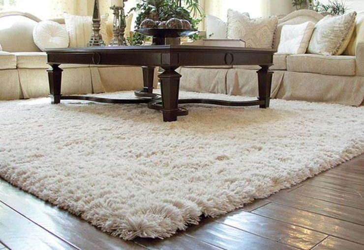 Ruang Tamu Dengan Karpet Bulu