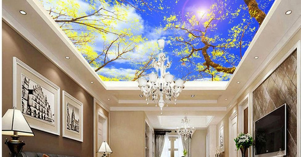 Gambar Motip Plapon Gypsum Desain Cet Langit Pemasangan