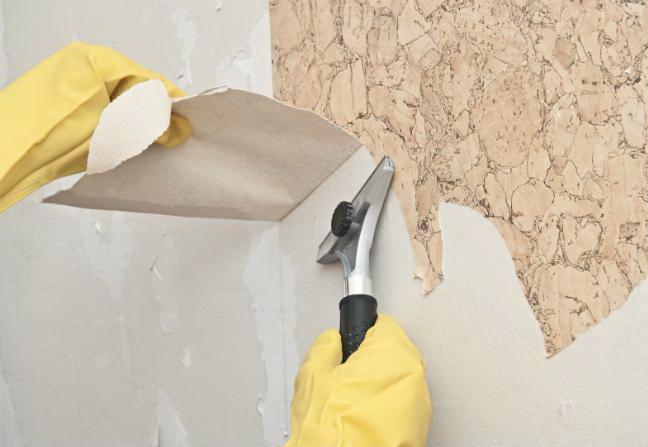 Cara Mengatasi Wallpaper Pada Dinding Lembab Nirwana Deco
